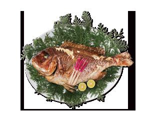 (29)祝鯛